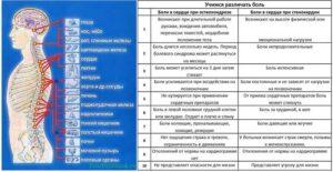 Остеохондроза, Остеопрактика